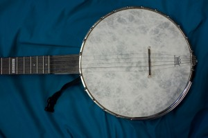 An African / American Instrument  - the 5 String Banjo