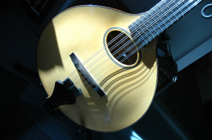 Wiens Cittern when new.