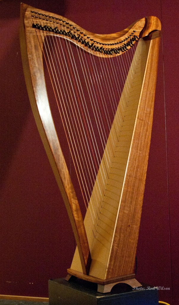 422. Dusty Strings Harp