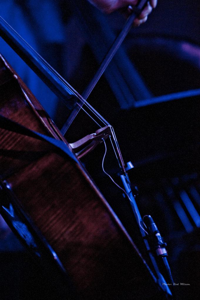 010. Cello